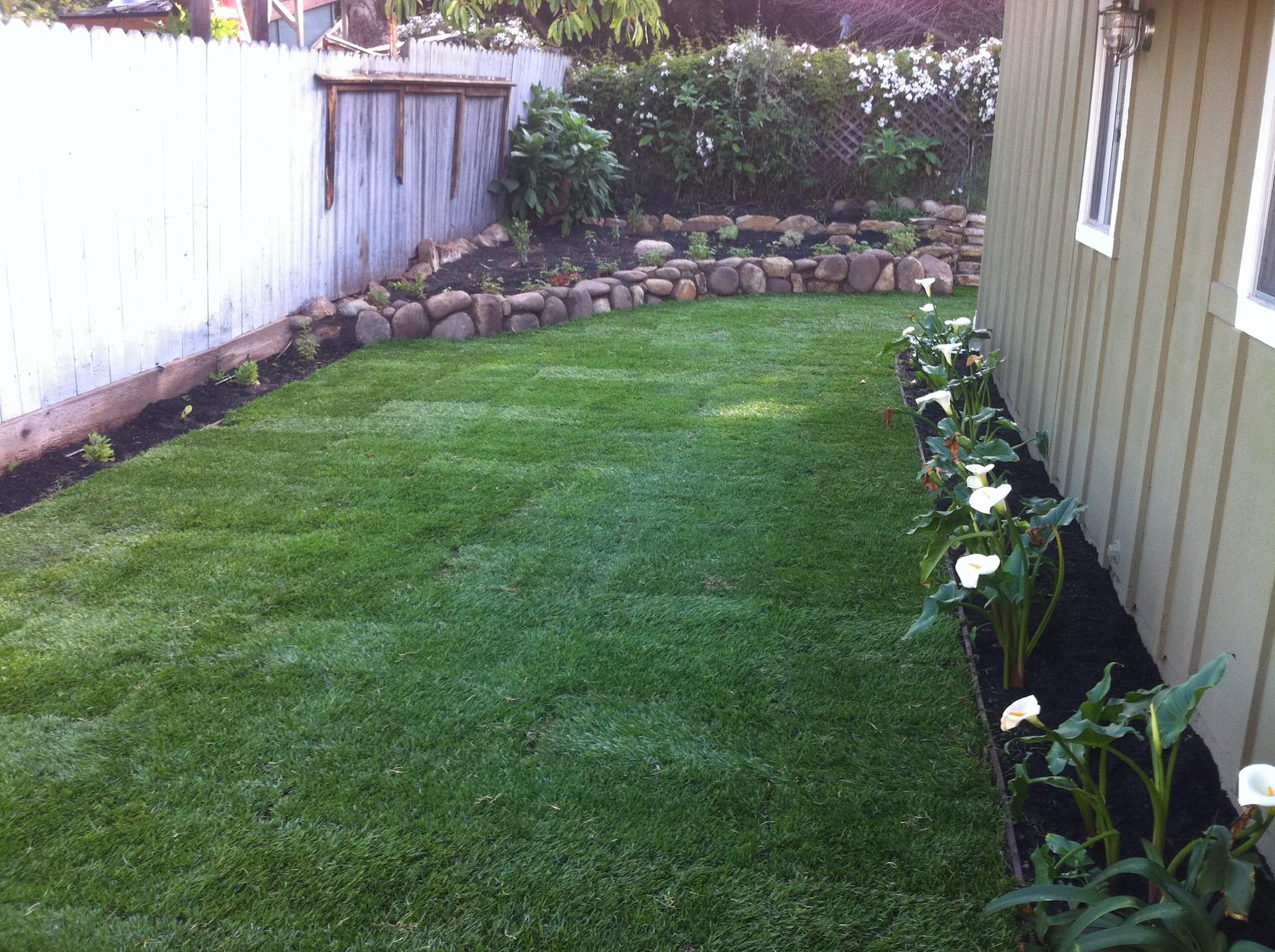 Santa Barbara Landscaping Experts